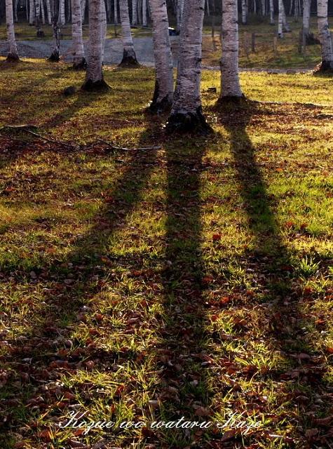 秋の情景6