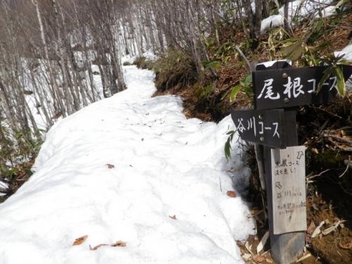 20140329fukuchiyama (13)