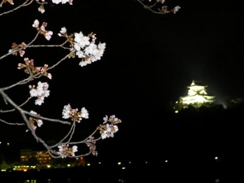 20140329fukuchiyama (32)