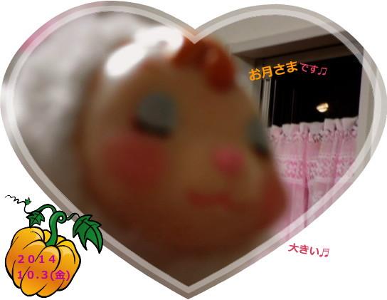 花ブ20141004-1