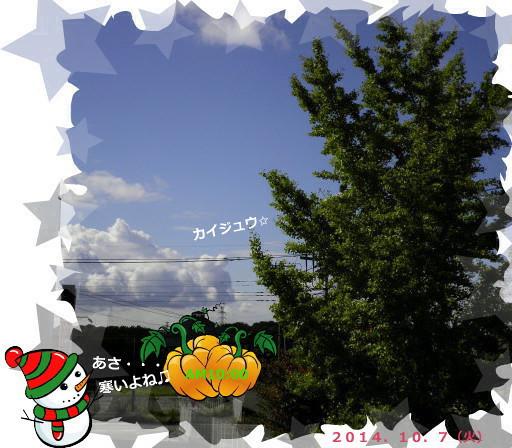 花ブ20141007-3