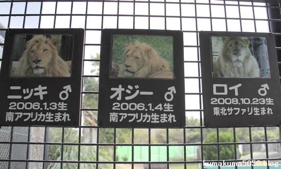 姫路セントラルパーク_28