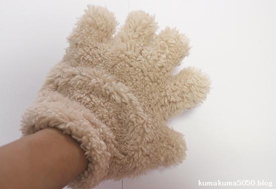 ネコの手_4