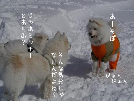 20140209_04.jpg