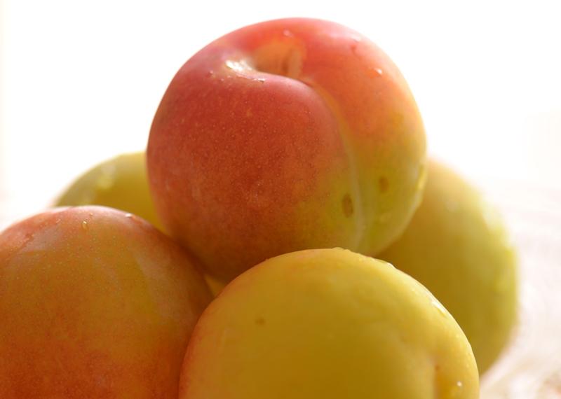 20140629 plum