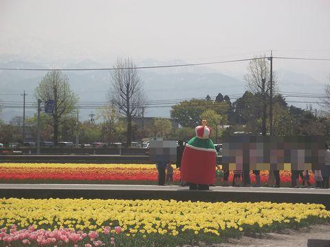 furawa0427-4.jpg