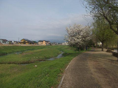 sanpo0419-1.jpg