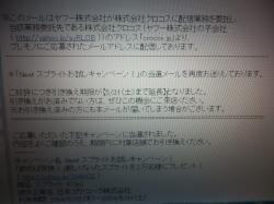 P5230698_convert_20140523221557.jpg