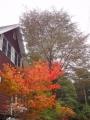 10月2日の秋-1