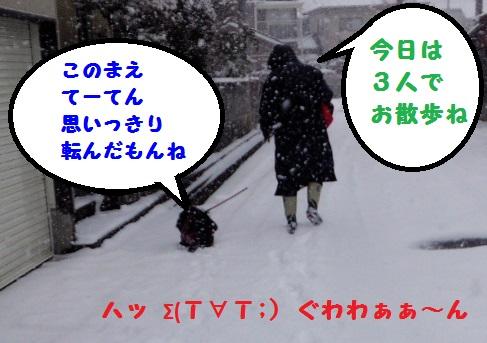 20140209mu1.jpg