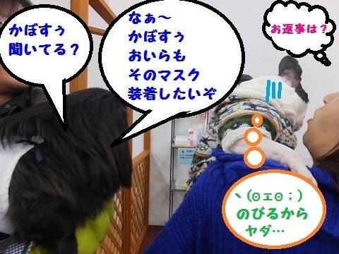 20140302mu41.jpg