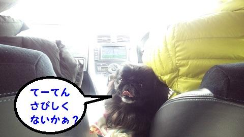 20140315mu5.jpg
