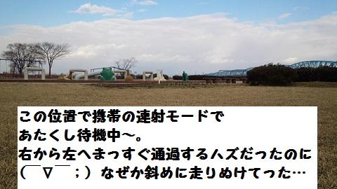 20140322mu19.jpg