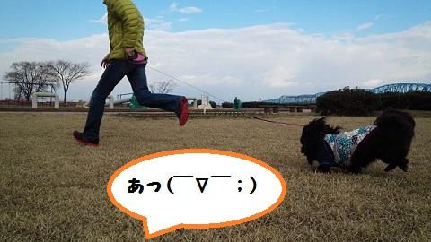 20140322mu20.jpg