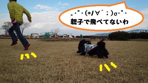 20140322mu21.jpg