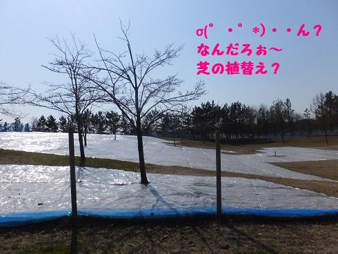 20140324mu1.jpg