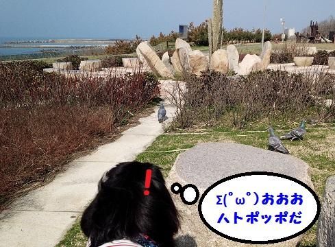 20140328mu4.jpg