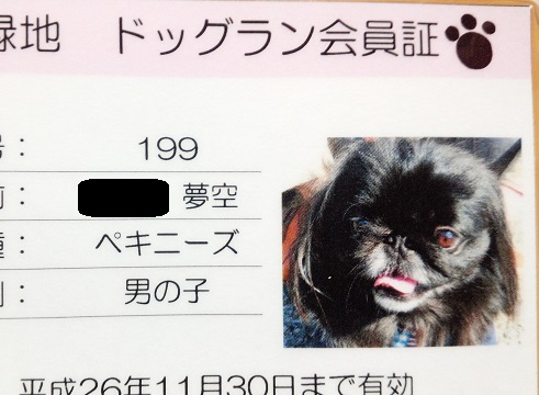 20140401mu9.jpg