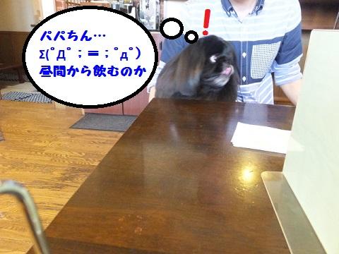 20140510mu1.jpg