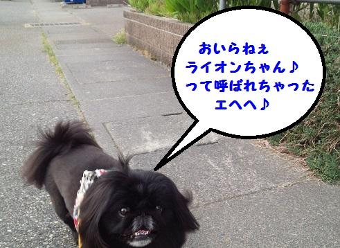 20140514mu7.jpg