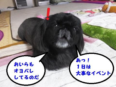 20140530mu7.jpg