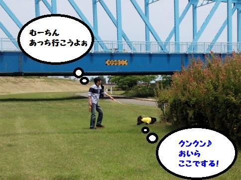 20140607mu1.jpg