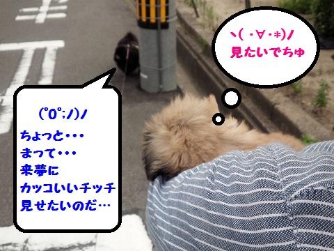 20140706m3.jpg