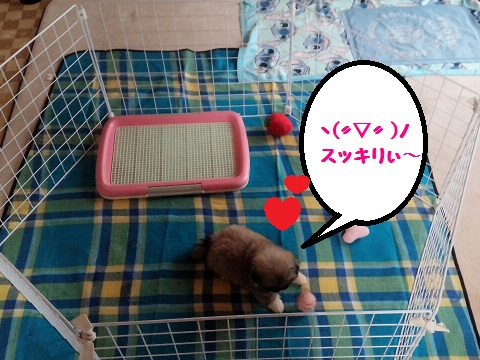 20140707m5.jpg