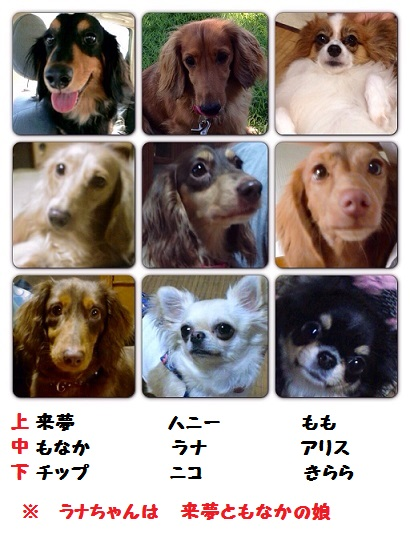 20140914m5.jpg