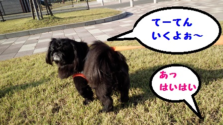 20140929m2.jpg