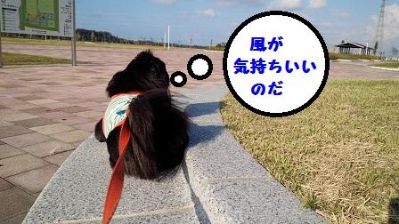 20140929m3.jpg