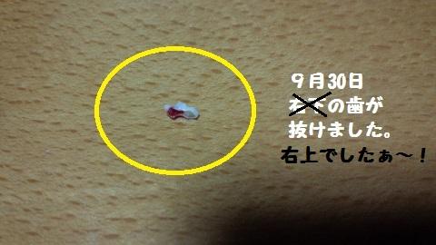 20140930m9.jpg