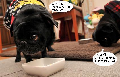 なめに食べられたぁ~