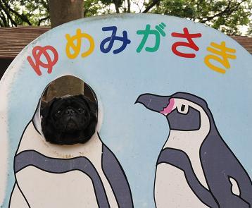 りきペンギン