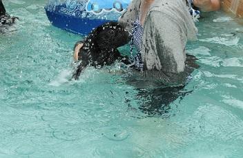 初泳ぎ、なめこ