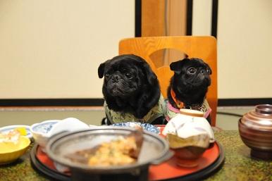 さぁ~食べようよ。