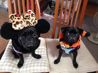 リッキーマウスとなめガー