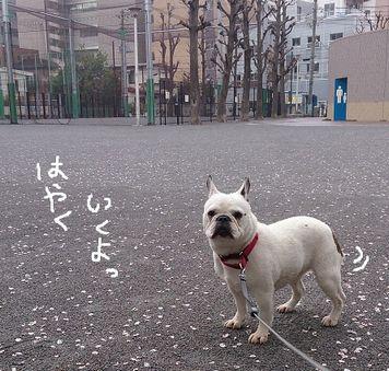 雨3番目 003