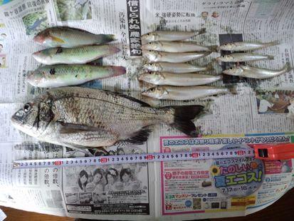2011-8-26000_R.JPG