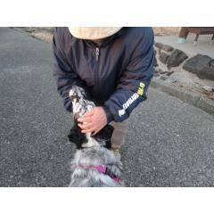 2014-2-21螟慕┥縺托シ胆convert_20140221220116