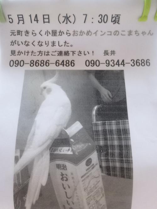 DSC01739_convert_20140515212430.jpg