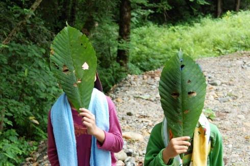 ⑫森林散策 (9)
