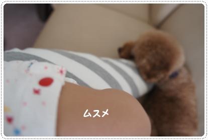 20140917_2.jpg