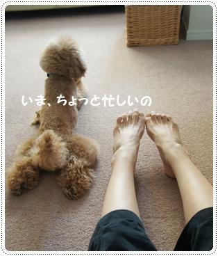 20141019_5.jpg