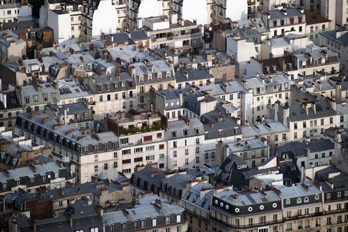 photo1_パリの屋根の下