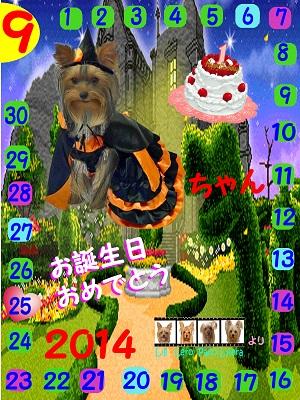 09-25-2014えみりぃちゃん誕生日