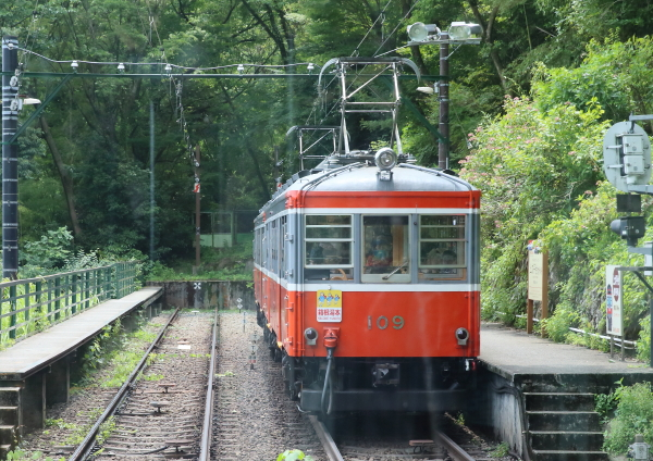 AM9P4109_1.jpg