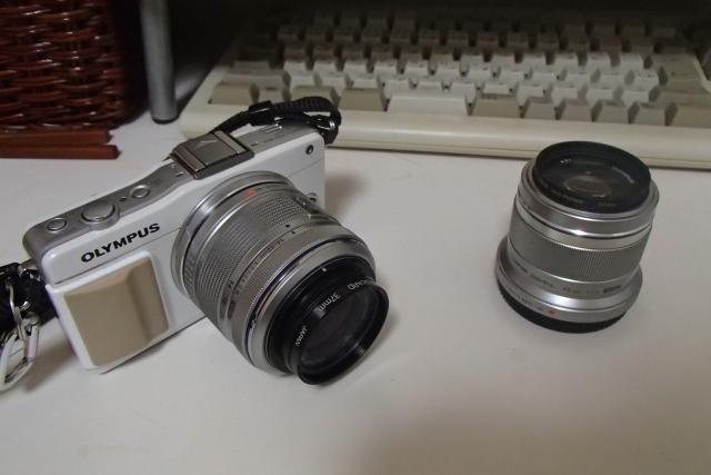 P8034752a.jpg