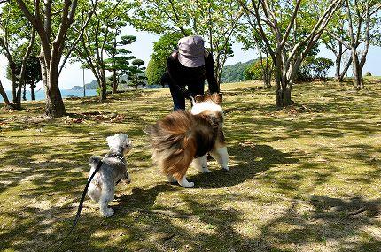 台風の風8