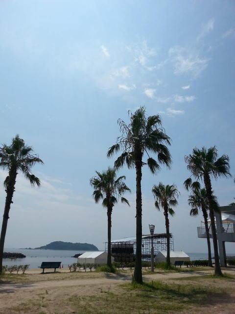 blog2014831C.jpg